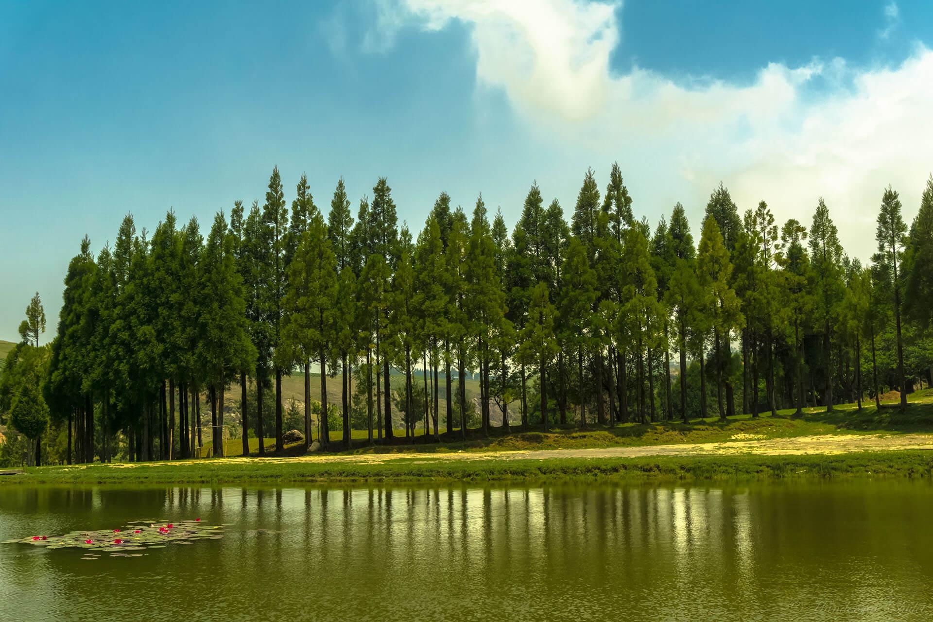 Meghalaya's Landscapes