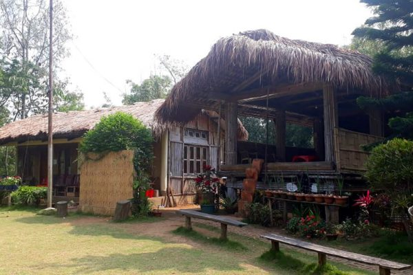 in-the-lap-of-nature-chandigre-village-experience